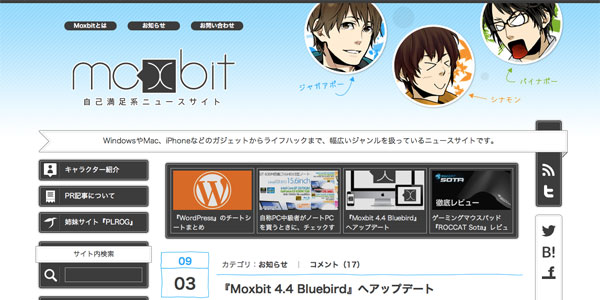 2013-new-year-bluebird