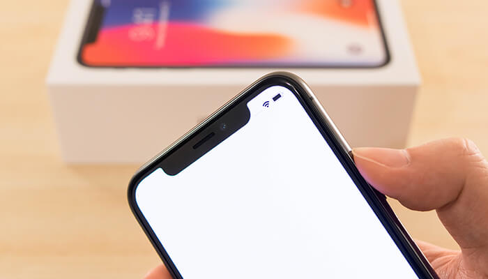 review-iphone-x-notch